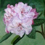 Fleur de rhododendron Huile sur toile 30x30 cm