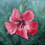Fleur d'hibiscus Huile sur toile 30x30 cm